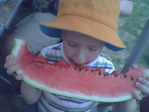 Eating Watermelons: Also not allowed on the bus.